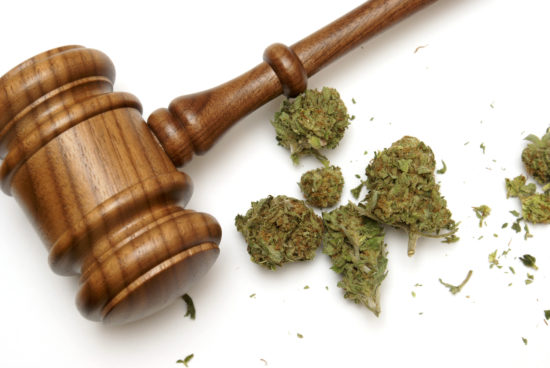 Gavel and Weed